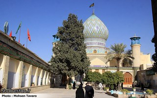 Ali Ibn Hamzeh Holly Shrine